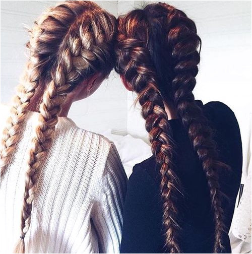 hair braid and friends image