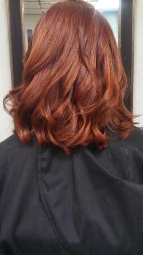 Copper Chestnut Hair Color Lovely Medium Copper Hair Color 50 Copper Hair Color Shades to Swoon