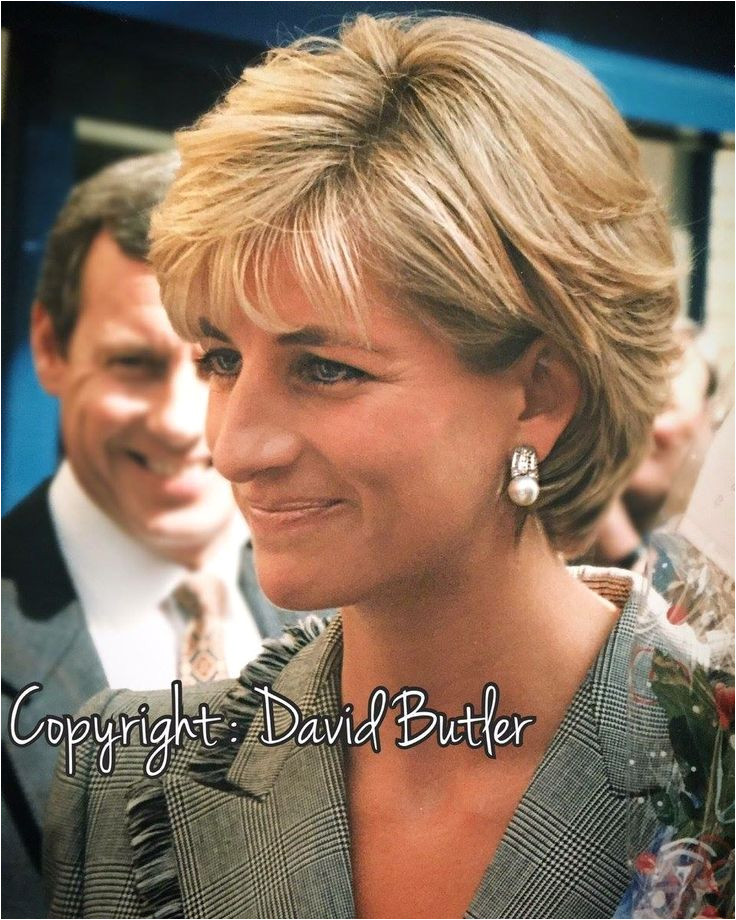 Found on Google from au pinterest Lady Diana Spencer Princess Diana Hairstyles