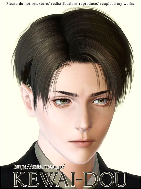 Download page of Levi s hair mod for Sims3