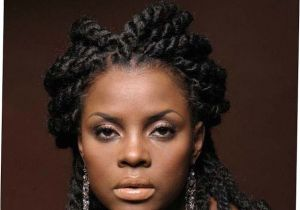 African American Fishtail Braids Hairstyles 21 African American Fishtail Braids Hairstyles 2017