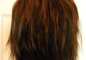 Back View Of Layered Bob Haircut 25 Back View Of Bob Haircuts
