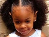 Black Hairstyles Ebony Natural Hairstyles for African American Women and Girls Art