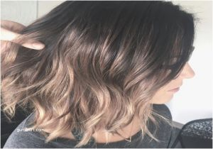 Black Hairstyles for Grey Hair Majestic Black and Grey Hair Styles – Teatreauditoridegranollers