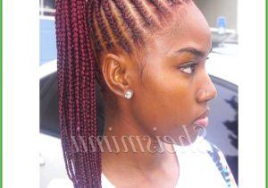 Black Lil Girl Hairstyles Braids Braid Hairstyles for Little Girls