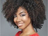 Black Natural Hairstyles 2012 Michelle Obama Rocks An Afro