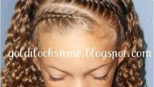 Braided Hairstyles for Mixed Hair Braided Front the Hair Says It