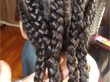 Braids Hairstyles for Adults Different Kinds Of Curls Cute Protective Hairstyle for
