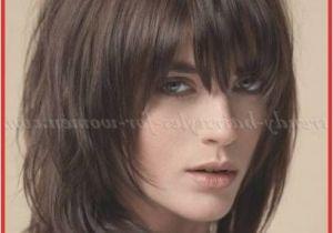 Chin Length Hairstyles Thin Hair Enormous Medium Hairstyle Bangs Shoulder Length Hairstyles with