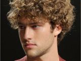 Cool Curly Hairstyles for Guys Short Curly Hairstyles for Men