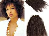 Curly Hairstyles with Hair Clips Malaysian Afro Kinky Curly Clip In Human Hair Extensions 120g Full