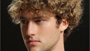 Curly Mens Hairstyles Short Curly Hairstyles for Men