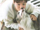 Cute Girls Hairstyles Dog Bts Jimin Photoshoot Bts Mochi Cute Chimchim Puppy Infiresman