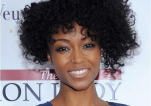 Cute Hairstyles for Natural African American Curly Hair Natural Short Curly Hairstyle