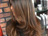 Cute Highlights Color Hair Colors with Highlights and Lowlights Light