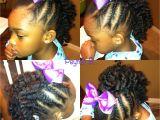 Cute Natural Hairstyles for Little Black Girls Braided Mohawk with Braidout In the Middle Natural Hairstyles for