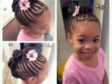 Cute Natural Hairstyles for Little Black Girls Inspirational Black Hairstyles Twists Updos Hairstyles Ideas