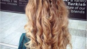 Down Hairstyles No Heat 31 Gorgeous Half Up Half Down Hairstyles Hair