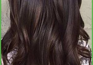 Dyed Hairstyles for Brunettes asian Hair with Highlights Awesome Long Hair Hairstyles Hair Dye