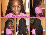 Easy Hairstyles with Weave Braids Havana Twist