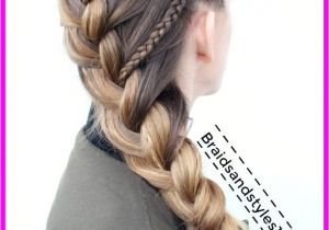 Easy Medieval Hairstyles Me Val Hairstyles Livesstar