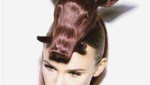 Easy Weird Hairstyles Easy Crazy Hairstyles