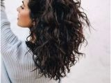 Everyday Hairstyles for Wavy Frizzy Hair 275 Best Wavy Hair Images
