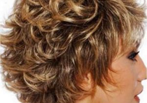 Hairstyle Womens 2015 New Short Curly Hairstyles for Womens 2015 Hair Care