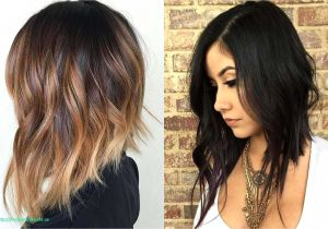 Hairstyles and Colors for Fall 2019 15 Luxury Haircuts 2019 Female Graph