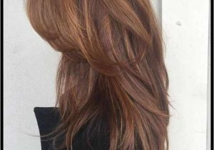 Hairstyles and Colors for Fall 2019 18 Luxury Hairstyle Color Ideas for Long Hair