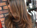 Hairstyles Blonde Streaks Dark Hair and Highlights Blonde Highlights Brown Hair Hair