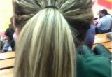 Hairstyles Braids Ponytails and Pigtails Tiny Multiple Braids Tied Into A Ponytail
