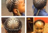 Hairstyles Braids to the Side Stylish Black Braids to the Side Hairstyles