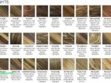 Hairstyles Copper Blonde Copper Blonde Hair Color Best Hairstyle Ideas