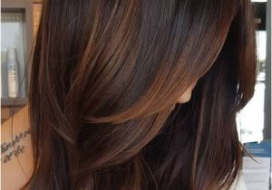 Hairstyles Copper Highlights 60 Hairstyles Featuring Dark Brown Hair with Highlights
