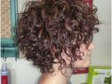 Hairstyles for Curly Hair at Work 292 Best Short Curly Hairstyles Images