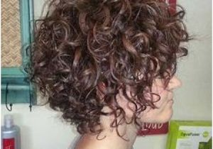 Hairstyles for Curly Hair for Work 292 Best Short Curly Hairstyles Images