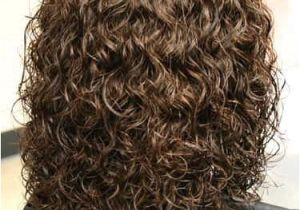 Hairstyles for Curly Permed Hair Perm Gallery Hair Styles I Adore