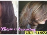Hairstyles for Dyed Grey Hair Brown Grey Hair Color Awesome Babylights Brown Hair Light Brown Hair