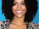 Hairstyles for Naturally Curly African American Hair African American Natural Hairstyles for Medium Short