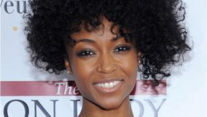 Hairstyles for Naturally Curly African American Hair Natural Short Curly Hairstyle