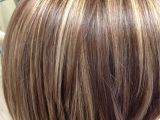 Hairstyles Frosted Highlights Highlights and An All Over Color Blended Perfectly Salon Pure