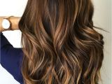 Hairstyles Subtle Highlights 60 Hairstyles Featuring Dark Brown Hair with Highlights In 2019