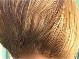 Hairstyles when You Have A Bob Pics Short Bob Hairstyles Unique Www Bob Haircuts Elegant Bob