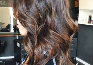 Hairstyles with Gray Highlights New Coloring Gray Hair Brown 91 Gallery Ideas