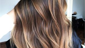 Hairstyles with Highlights 2019 60 Hairstyles Featuring Dark Brown Hair with Highlights In 2019