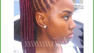 Hairstyles You Can Do with Braids Black Braided Hair Styles