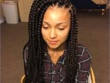 Large Box Braids Hairstyles Inspirational Braided Hairstyles for Grey Hair
