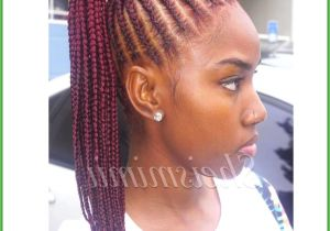 Lil Girl Twist Hairstyles Braid Hairstyles for Little Girls