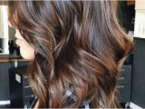 Long Hairstyles W Highlights Hairstyles with Highlights and Lowlights Highlights and